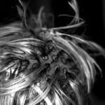 Farbenie vlasov – aké máte možnosti?