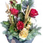 Vianočná ruža – symbol Vianoc aj ozdoba interiéru!