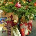 Vianočné nákupy
