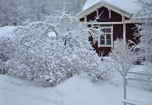 Netradičný Silvester 2011/2012