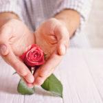 Kytica ruží, tulipánov či pivónií – každá skrýva niečo iné