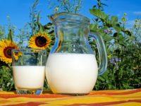 Proteíny – zdroj energie a celkovej kondície tela