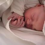 Mesiac po mesiaci: 2. mesiac tehotenstva – zrod nového človeka